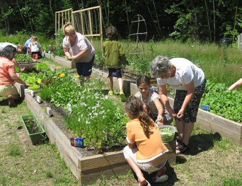 Zahrada pro všechny generace
